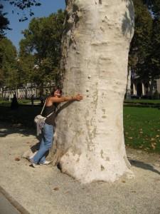 Оля и многовековое дерево