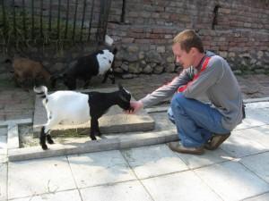В зоопарке Белграда