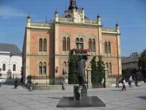 Владычин двор, памятник Йовану Йовановичу (Змай)