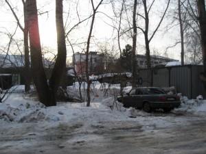 Часть срубленных кустов валяются рядом с расчищенной площадкой