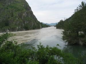 Чистая вода Чемала смешивается с мутными водами Катуни