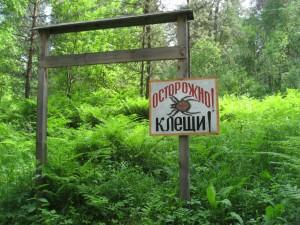 По пути к водопаду есть такая антиреклама. Но мы не поймали ни одного клеща за все время пребывания на Алтае