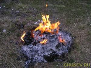 Тетради сгорели, остался пепел
