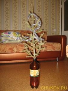 Верхушка пихты в качестве новогодней ёлки