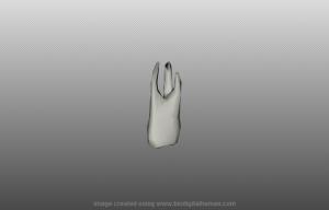 Отдельное отображение выбранного зуба