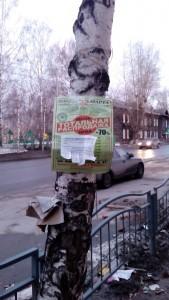 Реклама на деревьях и столбах